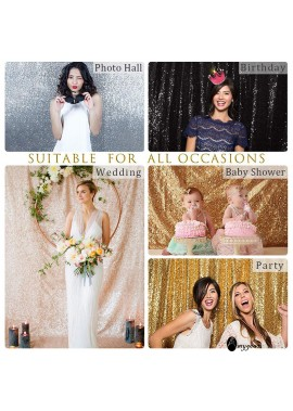 Sequin Gauze Wedding Background Multicolor