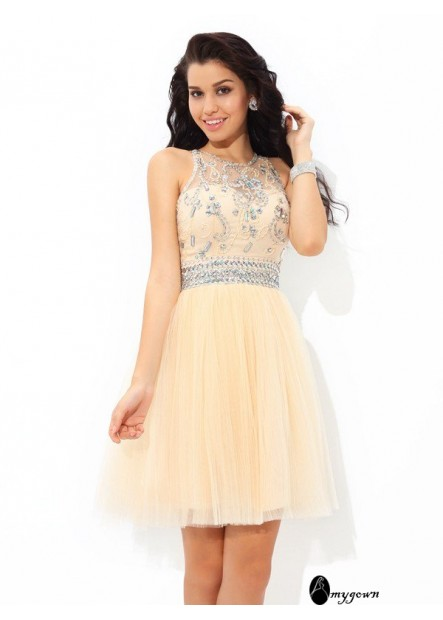 AmyGown Short Homecoming Prom Evening Dress T801524710420